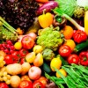 Dietetics Service Survey